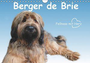 Berger de Brie-Fellnase mit Herz