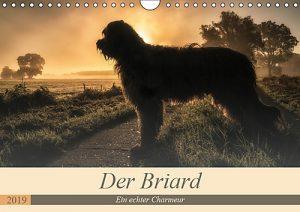 Der Briard-ein echter Charmeur