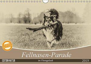 Fellnasen-Parade im Vintagelook