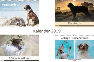 Titelbild-Kalender-2019