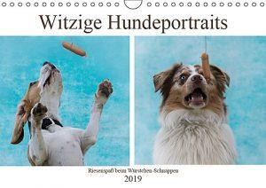 Witzige Hundeportraits